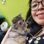 Imagen de perfil de Ana Isabel Rojas Romero